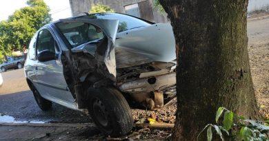 Motorista embriagada bate carro contra árvore em Osvaldo Cruz